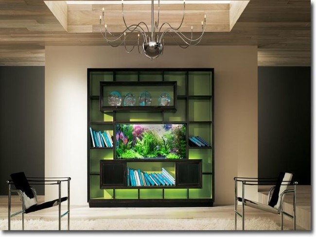 Большой прямоугольный аквариум в центре книжного шкафа.