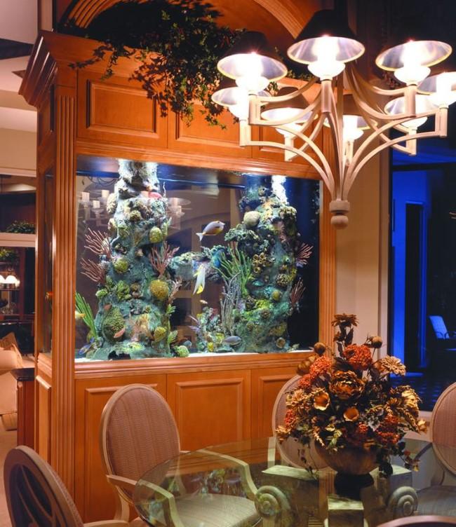 Аквариум с подсветкой, встроенный в стену между столовой и гостиной.