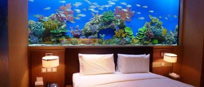 19 необычных идей по использованию аквариумов в интерьере домов и квартир