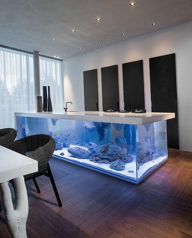 Прямоугольный аквариум, встроенный в рабочий кухонный стол.
