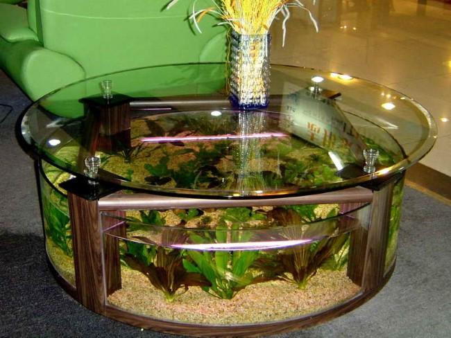 Круглый аквариум в основании стеклянного журнального столика.