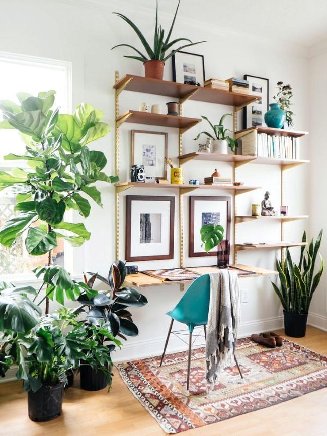 Деревянные книжные полки и живые растения в просторном кабинете в экостиле.