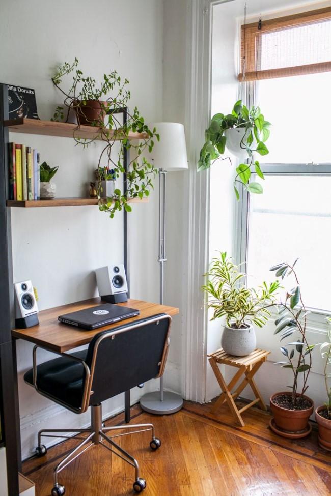 Экостиль в интерьере домашнего кабинета: домашние растения и деревянная мебель.