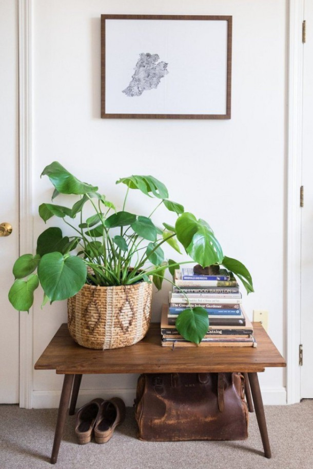 Растения, составленные в корзину